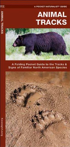 Pocket Naturalist Guide: Animal Tracks