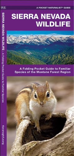 Sierra Nevada Wildlife: A Folding Pocket Guide to Familiar Species of the Montane Forest Region