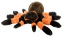 Stuffed Animal: CK Tarantula 12""